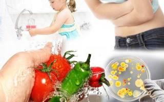Симптомы, лечение, описание возбудителей пищевой токсикоинфекции