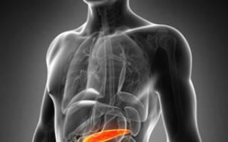 Полезные и вредные продукты при панкреатите