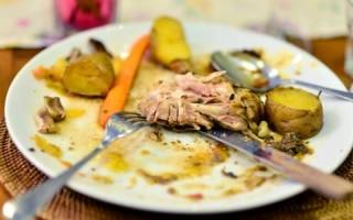 Причины появления чувства тяжести в желудке, отрыжки, тошноты после еды