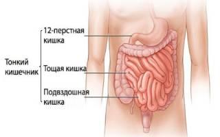 Симптомы и лечение заболеваний двенадцатиперстной кишки