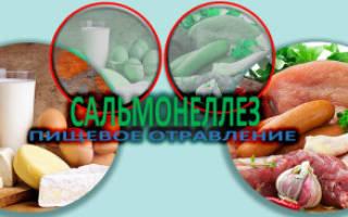 Причины симптомы и лечение сальмонеллёза у взрослых и детей