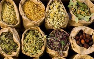 Какие травы помогут вылечить поджелудочную железу?