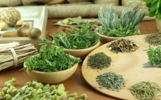 Какими травами можно лечить панкреатит и холецистит?