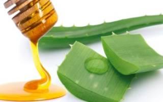 Лечение язвы желудка и гастрита: рецепт алоэ с медом