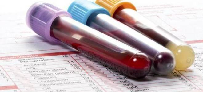 Каковы нормальные показатели биохимического анализа крови у детей?