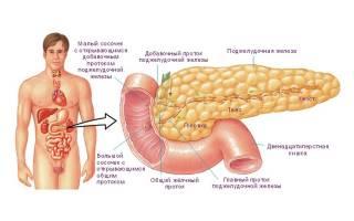 Какие анализы сдать, чтобы проверить работу поджелудочной железы?