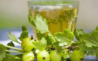 Применение трав и других народных средств в лечении диареи у взрослых