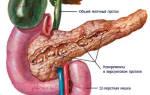 Особенности калькулезного панкреатита