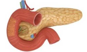 Почему при панкреатите назначают Необутин?